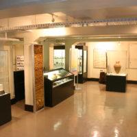 鹿児島大学総合研究博物館