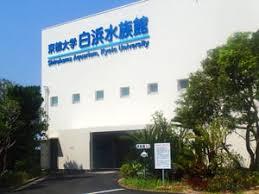 京都大学フィールド科学教育研究センター瀬戸臨海実験所水族館